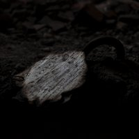 Находка на промзоне :: Julia Obraz
