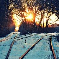 Зимний закат :: Алексей Лебедев