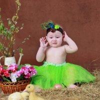 Виолка и цыплята :: Юля Ларина