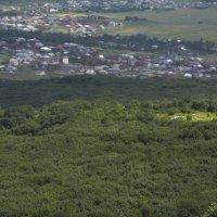 Вид сверху на поселок Змейка. :: Виктор Лавриченко