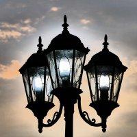 light :: Тимур