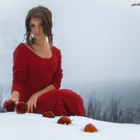 Яблоки на снегу :: Ольга Возиян
