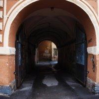 арка Питера :: Сергей Желтов