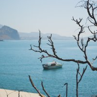 Крым, Новый свет :: Marina Avtenyuk