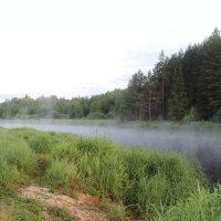 Река :: Лариса федотова