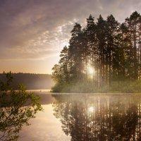 Ранняя рыбалка :: Игорь Гришанин