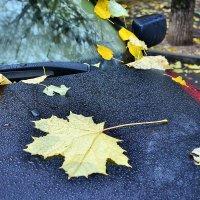 Осень... :: lidokkk474 Сычева