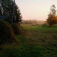 Утро. :: Андрей Генинг.