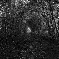 Арт-Тунель :: Денис Алексеенков