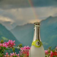 альпийский натюрморт :: Nina Delgado