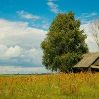 Белорусский пейзаж :: Александр Аль-А