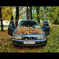 Встреча лета с осенью. :: lidokkk474 Сычева
