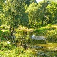 у реки :: valeriy g_g