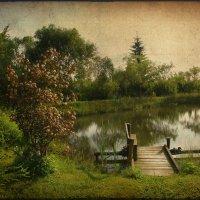 Была весна, был месяц май..... :: Елена Kазак