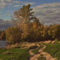 Небо осенью дышало :: Александр Stepanov
