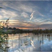 Отражение неба :: Алексей Говорушкин