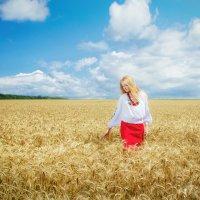 Лето :: Елена Ткаченко
