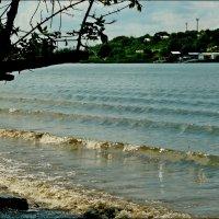 И на реке бывают волны! :: Надежда
