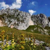 суровые горы и цветущие долины :: Elena Wymann