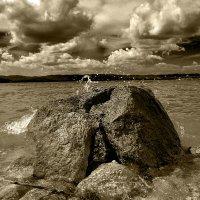 Камень на берегу... :: Дмитрий Петренко