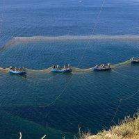 Рыбаки :: Татьяна Панчешная