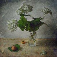 Цветы и абрикосы :: Ирина