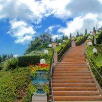 Лестница в небо :: Tatyana Belova