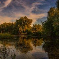 Заросшая река. Закат. :: Владимир Макаров