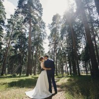 В лесу :: Юля Тайцай