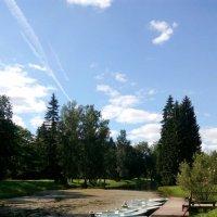 Прогулка в парке. :: Наталья Куклина