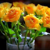 золотая россыпь лета-розы :: Олег Лукьянов