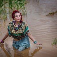 Где то в верховьях Нила.... :: Виктор Седов