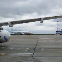На северном аэродроме летом. :: Alexey YakovLev