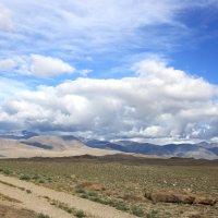 Дорогами Монголии :: Ирина Королева
