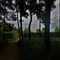 Дорожка ведущая к свету... :: Sergey Gordoff