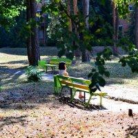 На скамейке девушка сидит грустит о чем :: Сергей Землянский