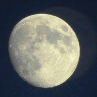 Луна :: Игорь Максименко