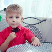 Маленький джентльмен :: GaliNa Khv