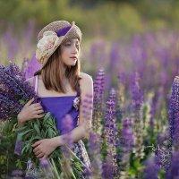 Люпиновый рай :: Елена Кельина