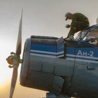 самолёт тоже нуждается в заботе :: Светлана Козлова