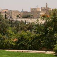 Вид на Старый город :: Александра
