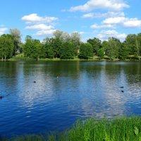 Озеро :: Клара Леоненко