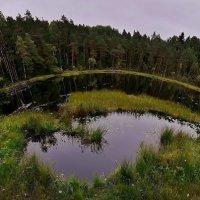Я так и знал,что Земля не имеет форму чЮмодана,,,,,,,,,,,,, :: Дон Пионеро Карбонариевский
