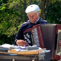 Парковый музыкант. :: Павел Лушниченко