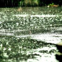 Дождь! :: Натали Пам