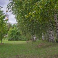 Берёзки в окрестности храма. :: Виктор Евстратов