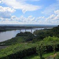 Пейзаж с ж/д мостом :: Вера Щукина