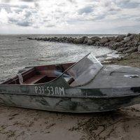 Берег Финского залива :: Наталья Левина