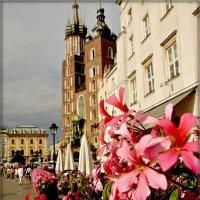 Краков :: Galina Belugina