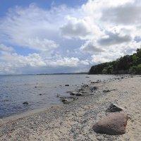 Балтийское побережье в августе :: Маргарита Батырева